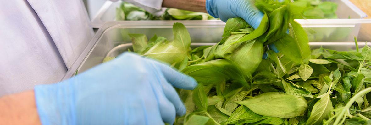 Employee Tossing Salad